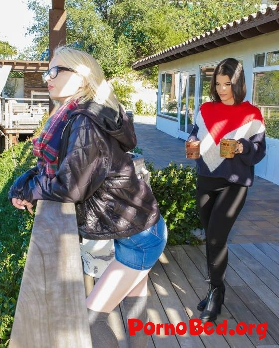 Alice Pink, Lasirena69 - A Lesbian Walk To Remember (Dyked, TeamSkeet) (08.06.2019 | FullHD)